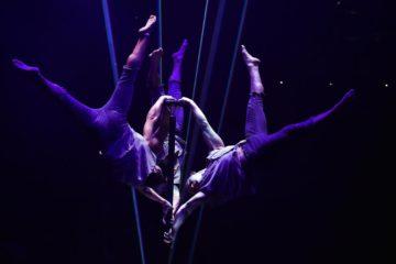 CIrkostéo un réseau d'ostéopathe des arts du cirque